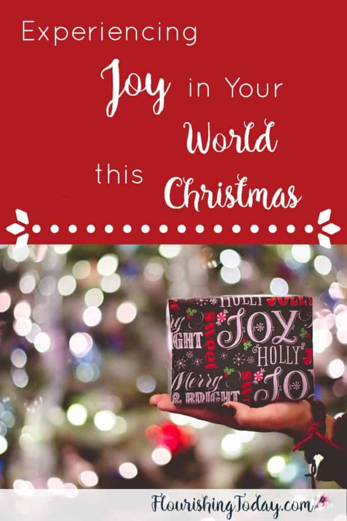 Experiencing Joy in Your World this Christmas | Joy to the World | Christmas Challenge | Jesus the Reason for the Season