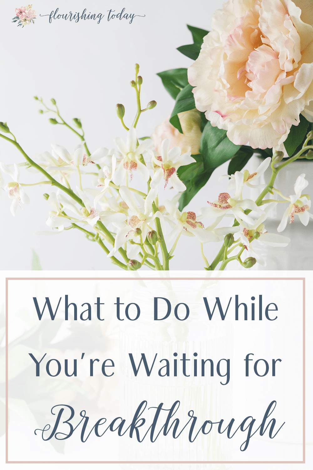 Are there places in your life that seem dead or forgotten? How do you hang on to hope while your waiting for God's timing? Here are a few things to do while your waiting for breakthrough. #breakthrough #waiting #Godstiming