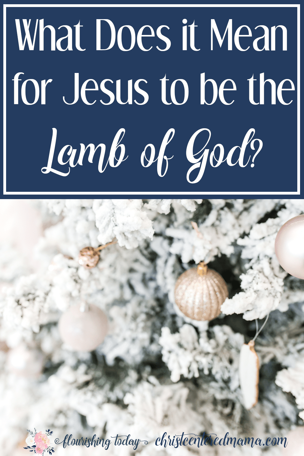 What does it for Jesus to be the Lamb of God? Join us this Christmas as we study the names of Jesus and learn about the Lamb of God.