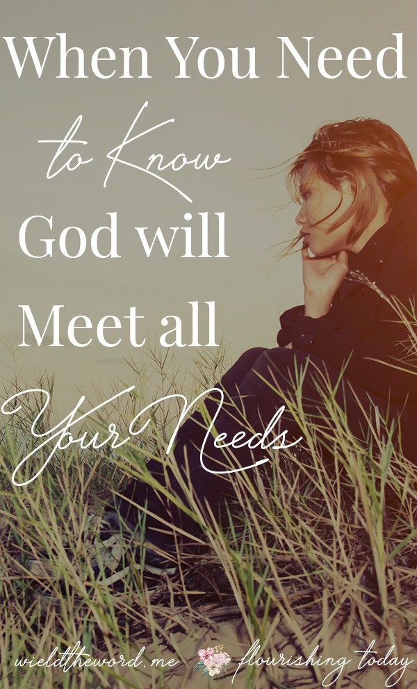 Are unsure that God will meet all your needs? God wants to bless us and provide for our needs. Here are a few truths when you want to know God will meet all your needs. #godsprovision #provision #meetyourneeds